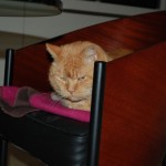 ginger_2013_01_chair