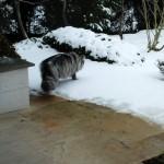 islay_2013_02_snow_again