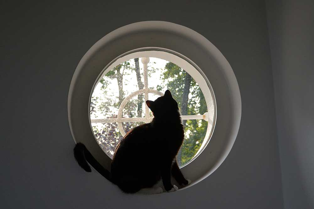 Teil 399 – Am Fenster