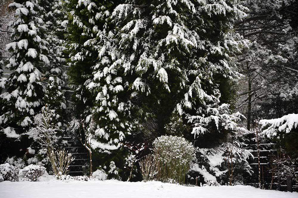 Teil 437 – Winterwochenende: Samstag