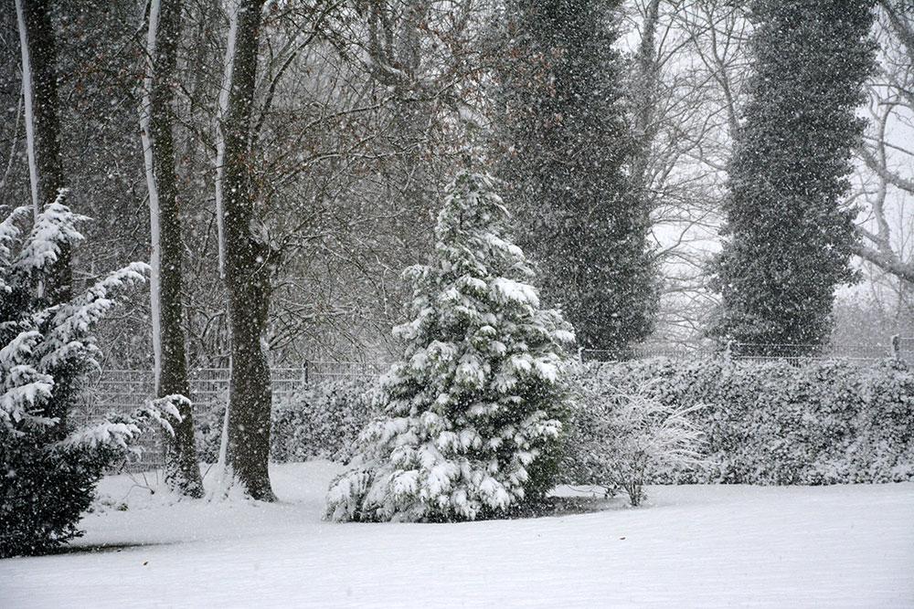 Teil 810 – A Christmas Caper, Part 1